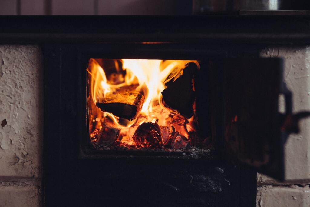 Wood Fire with door open